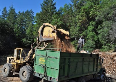 Photo of landscape mulch in bulk dumped into truck